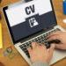 Contoh CV Format PDF Terbaru yang Baik dan Benar